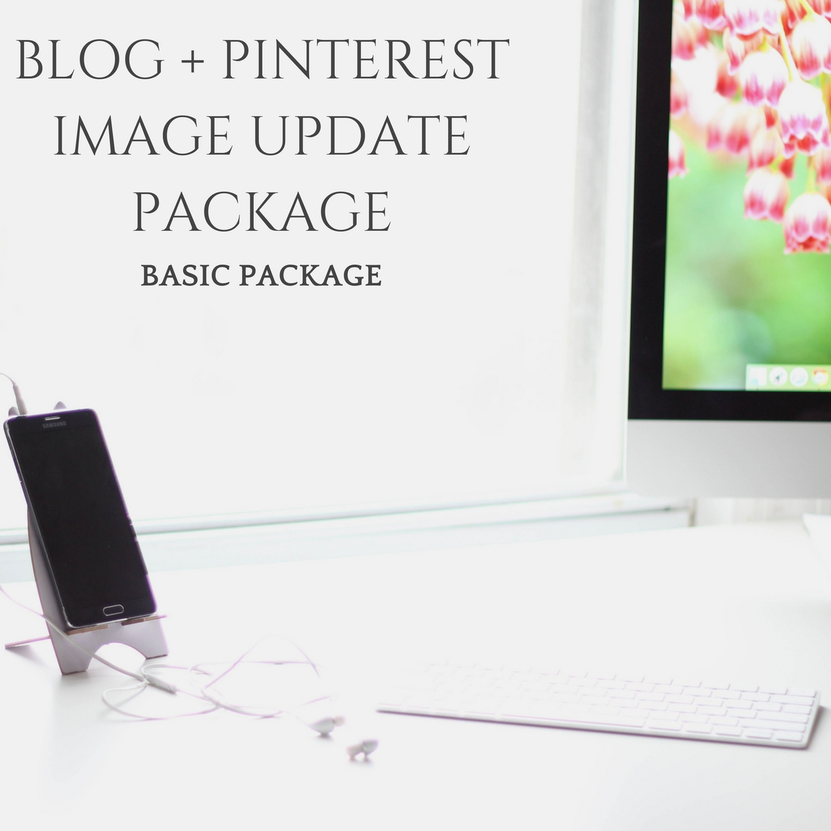 BLOG + PINTEREST IMAGE UPDATES - BASIC PACKAGE