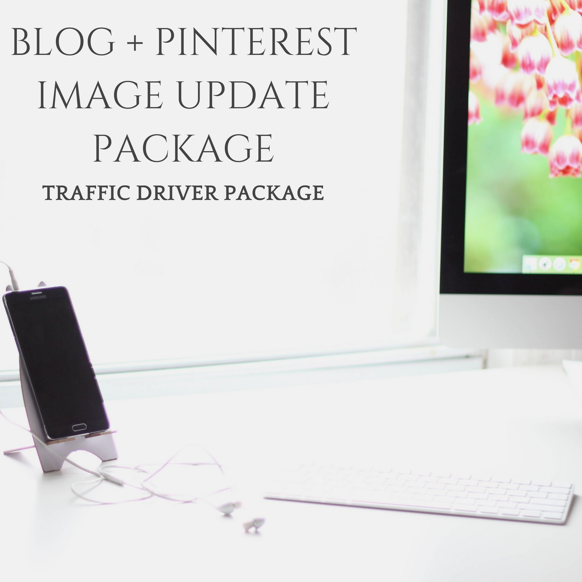 BLOG + PINTEREST IMAGE UPDATES - TRAFFIC DRIVER PACKAGE